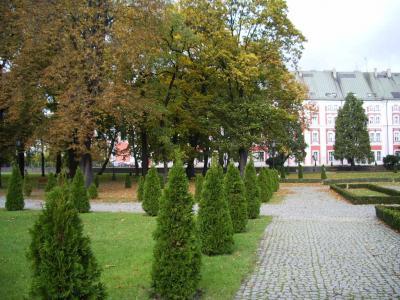 polonia_poznan-y-lublin_1713_23.jpg
